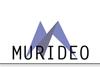 Murideo100x67